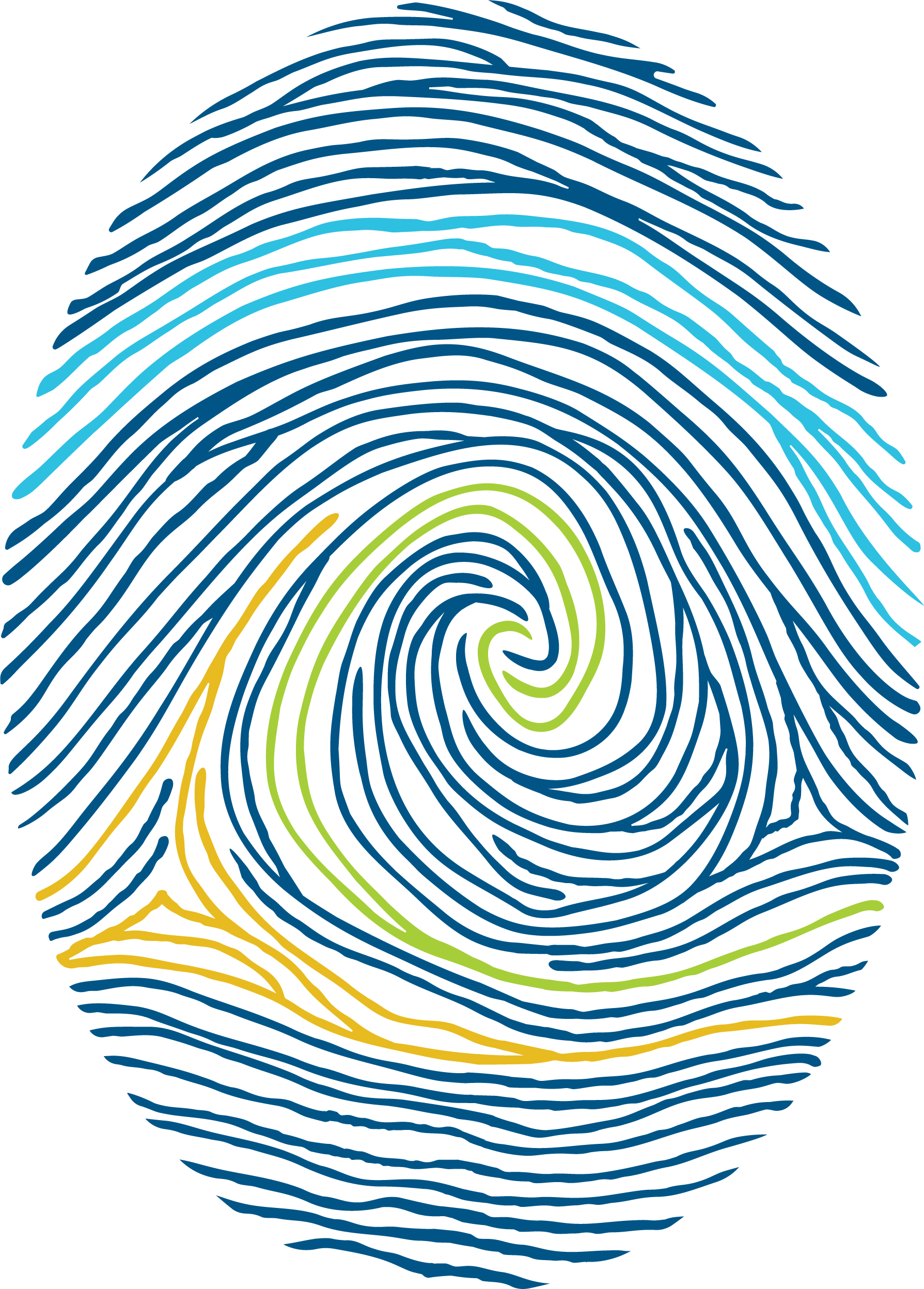 Colour fingerprint graphic